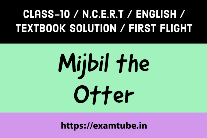 NCERT Solutions 10th English First Flight Chapter 8 Mijbil the Otter