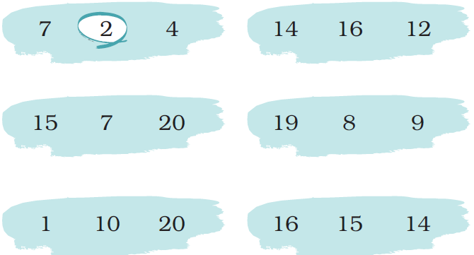 ncert solutions class 1 maths chapter 5 numbers from ten to twenty 61